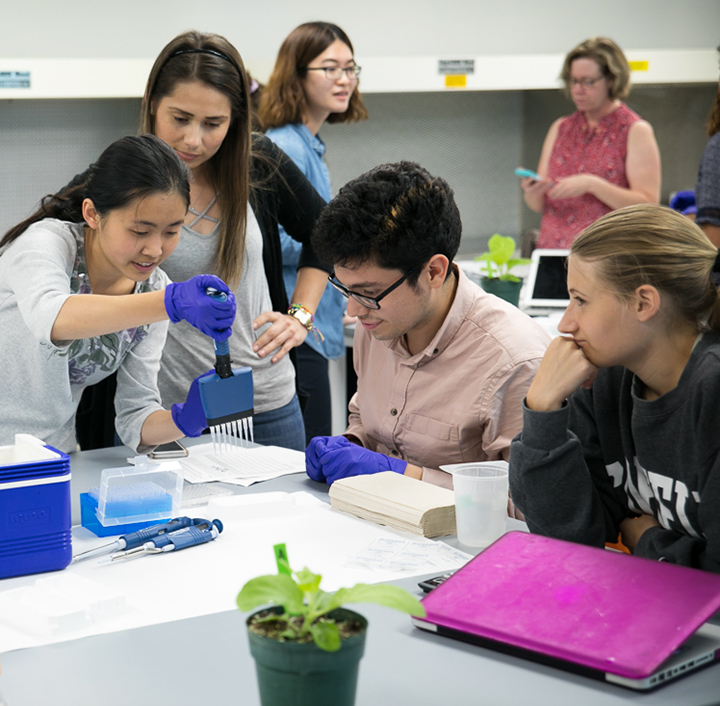 Students practice pipetting techniques in lab class to prepare a biological sample for testing
